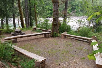 a wooden bench sitting next to a forest