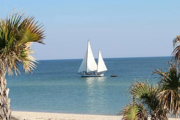 a boat on a beach with palm trees and a body of water