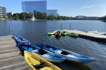 kayaks on the water