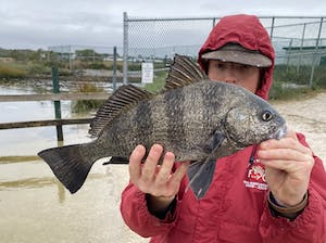 a person holding a fish