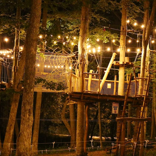 An awesome shot of our adventure park at night.