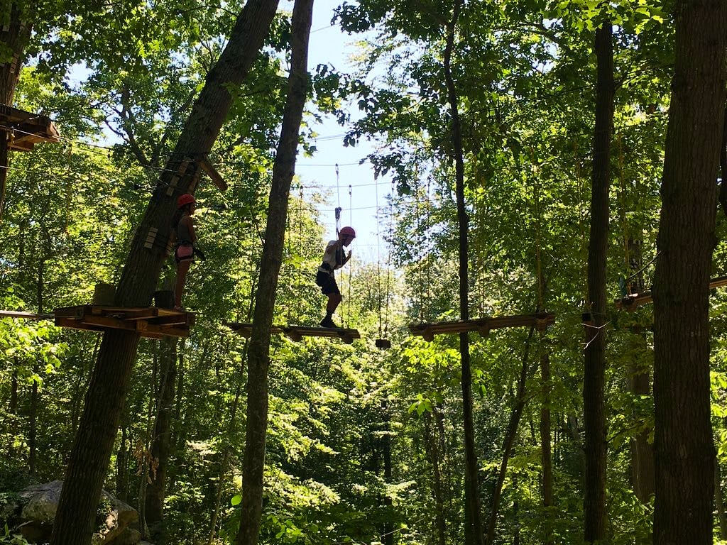 A guests suspended way up in the trees!