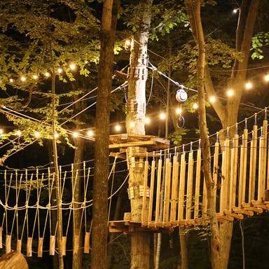 The Aerial Adventure Park at night.