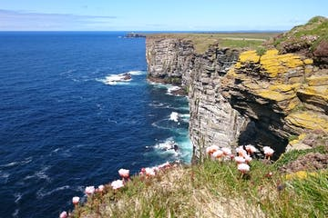 Orkney-cliffs