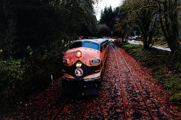 a person sitting on a train track with trees in the background