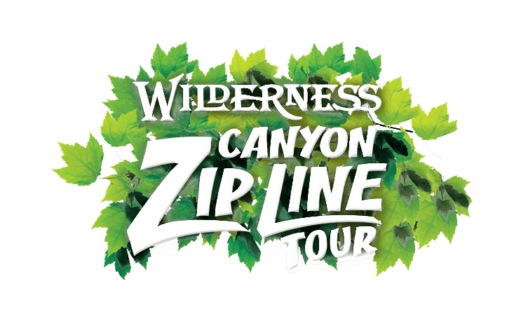 white2012 Zip Line Logo with Leaves