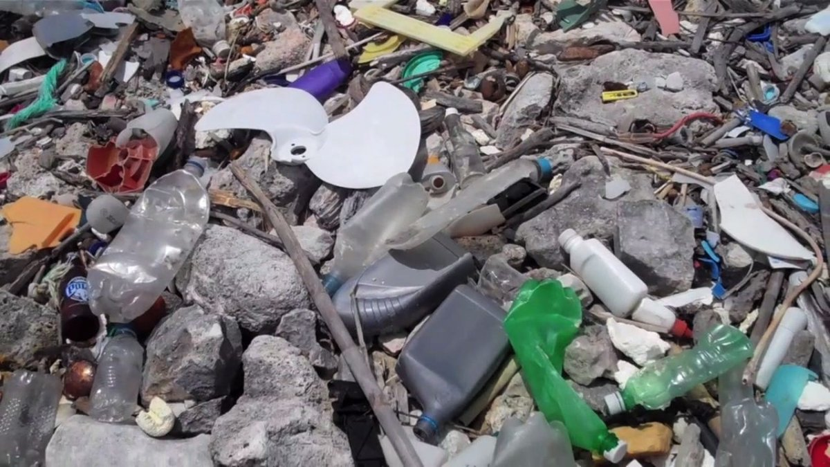 marine debris, trash, plastic pollution