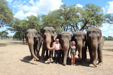 a group of people standing around a baby elephant walking along a dirt road