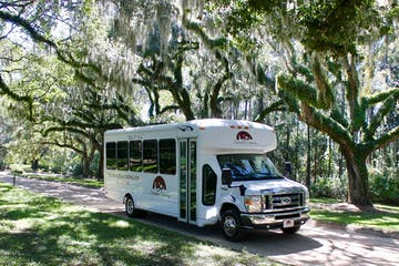 a bus parked in front of a tree