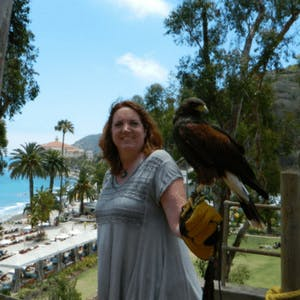 a person standing in front of a bird