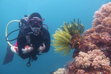 a PADI instructor doing an introductory dive