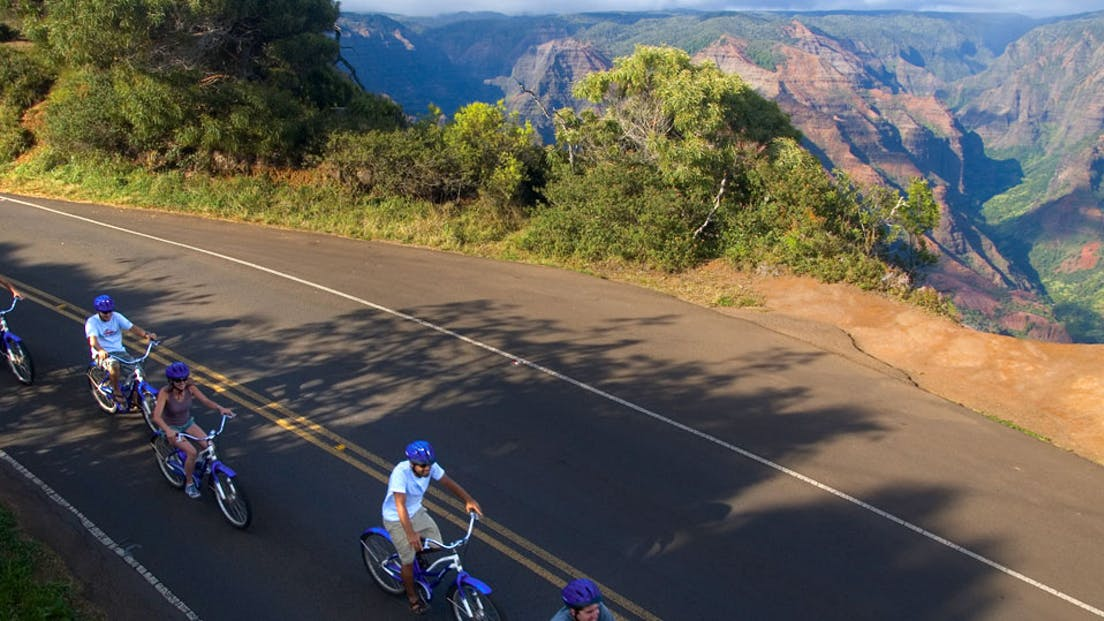 Waimea Canyon Bike Downhill Tour with Outfitters Kauai