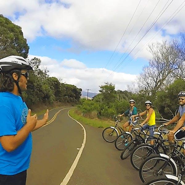 Waimea Canyon Bike Downhill Tour Image