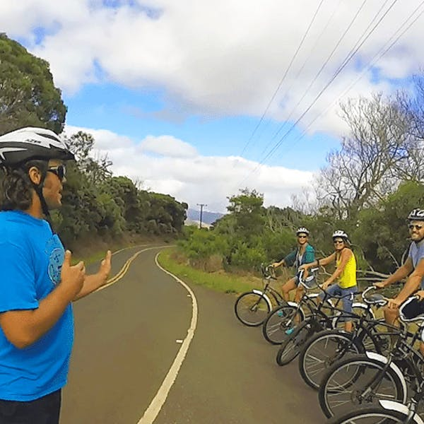 Waimea Canyon Bike Downhill Tour Image