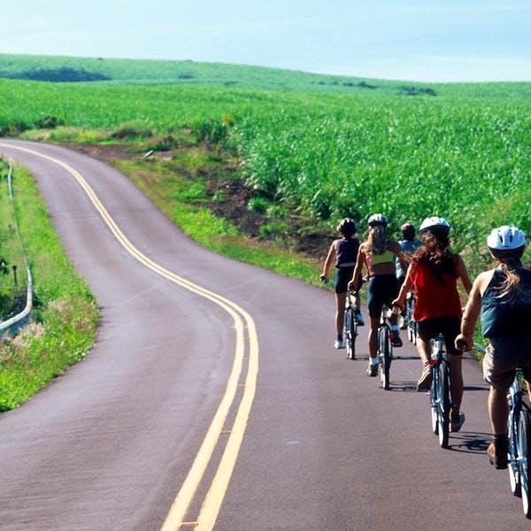 A group biking down a road