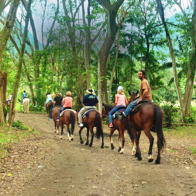 A group is guided on horseback