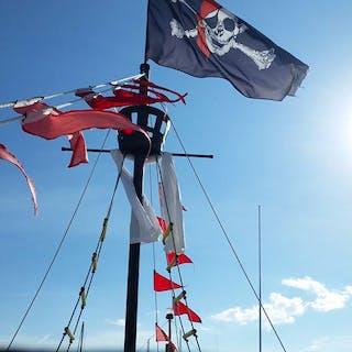 Pirates of Charleston Sail and Flag