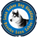Luna Lobos Dog Sledding