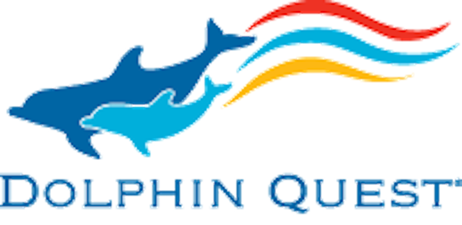 Dolphin Quest | Swimming with The Dolphins | Bermuda, Hawaii, & Oahu