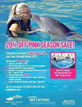 DQB Pink Season Sale