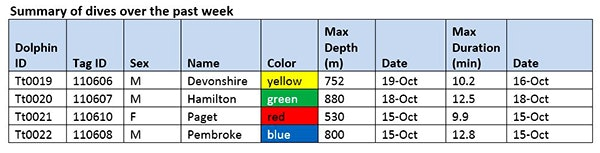 bwdp_wk6_table