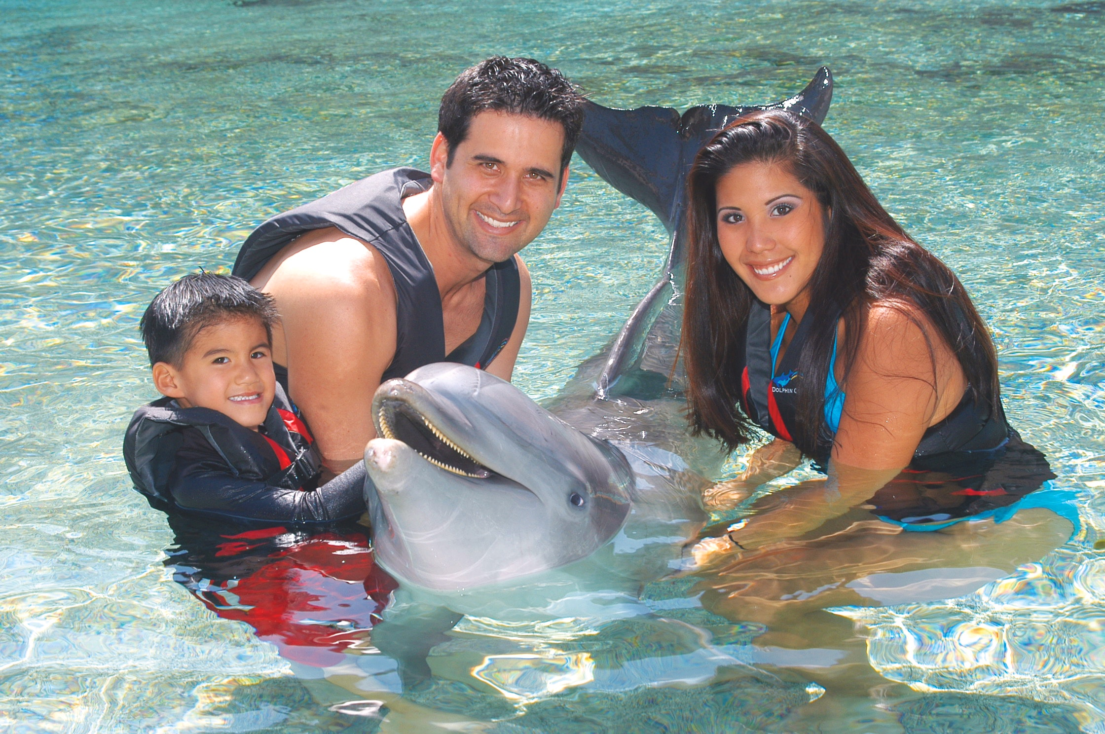 Dolphin Quest About Dolphin Sanctuaries