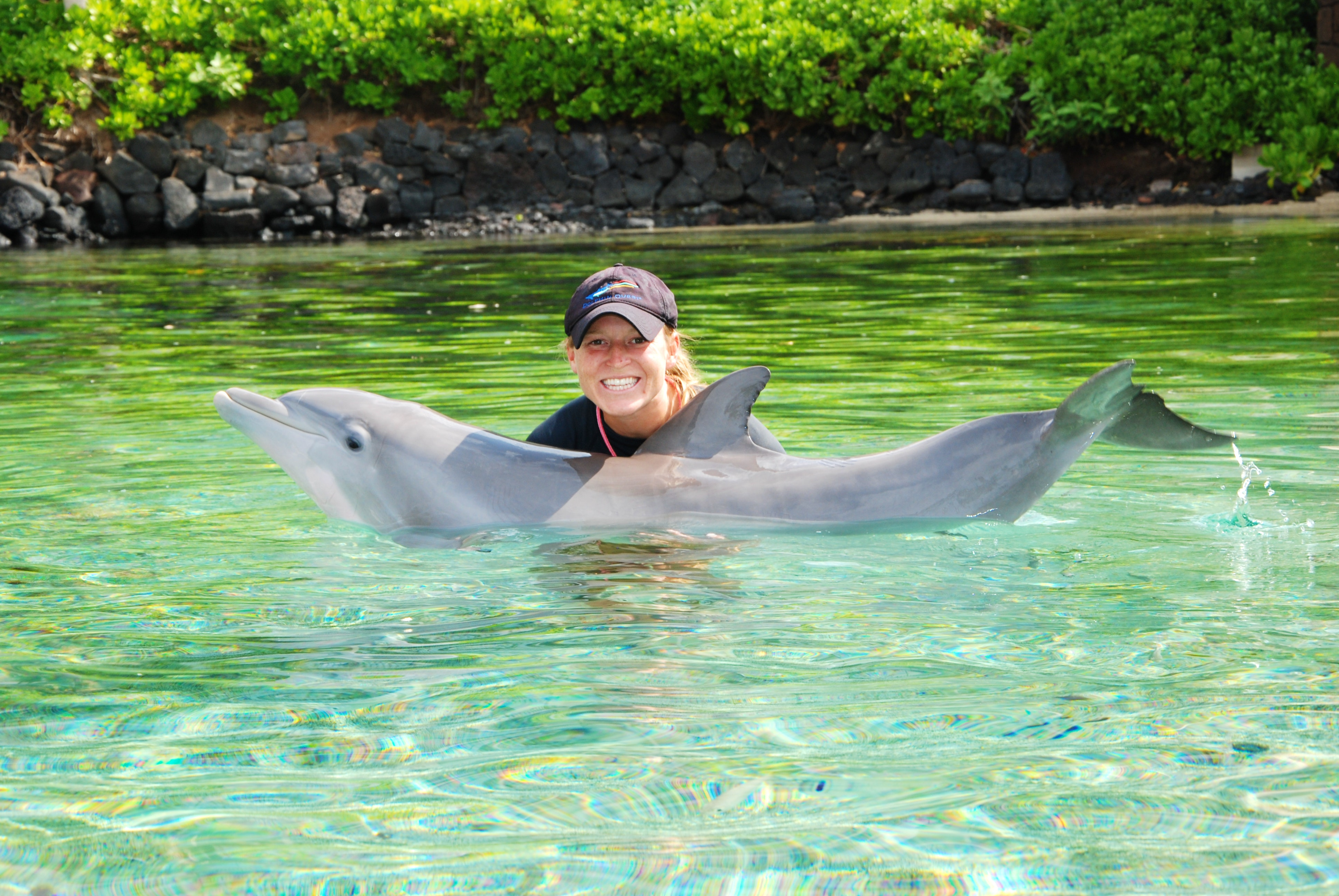 dolphin calf with trainer