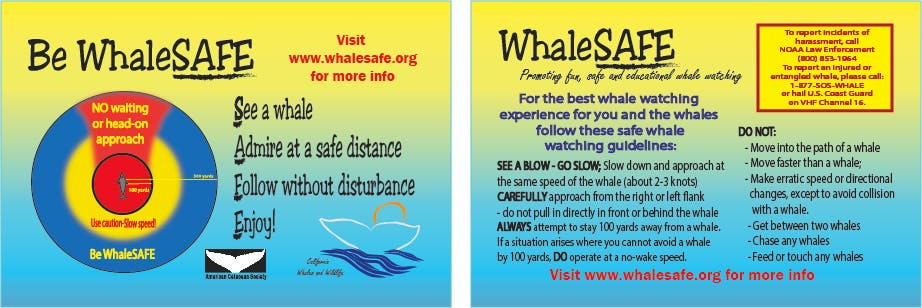 Be WhaleSAFE instructions