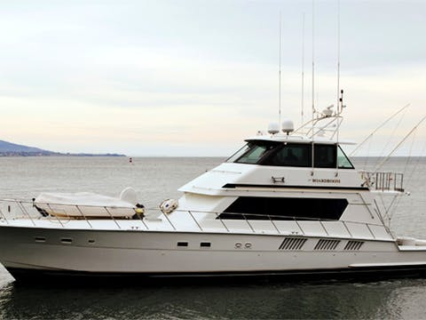 Image of the Boardroom boat