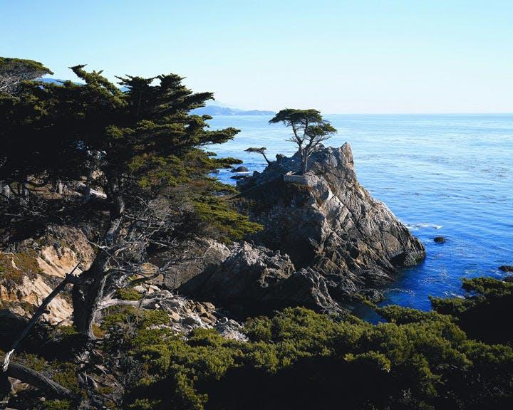 Monterey & Carmel   California Coastline Tour - Tour Photo 1 of 9