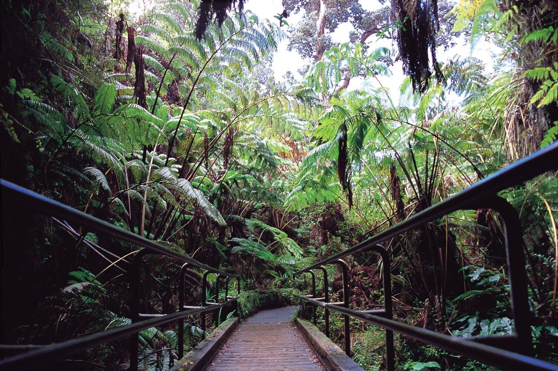 Adult dating services hawaiian paradise park hawaii 3