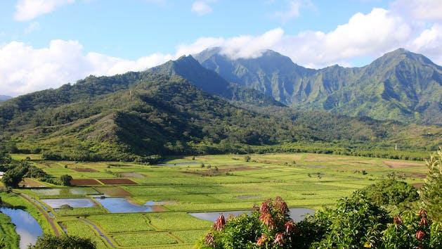 Roberts Tours Kauai