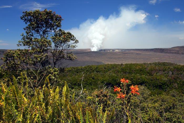 Roberts Hawaii Big Island Volcano Tour