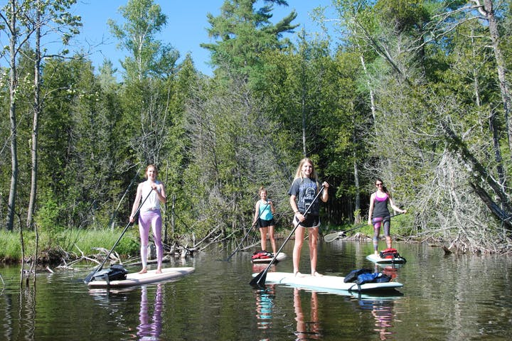 A group of stand-up paddle boarders