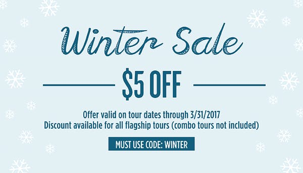 Winter Sale 2017 resized