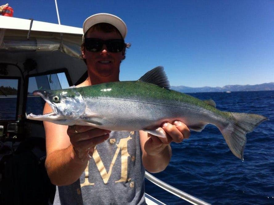 Lake tahoe fish tahoe sport fishing for Lake tahoe fishing charters