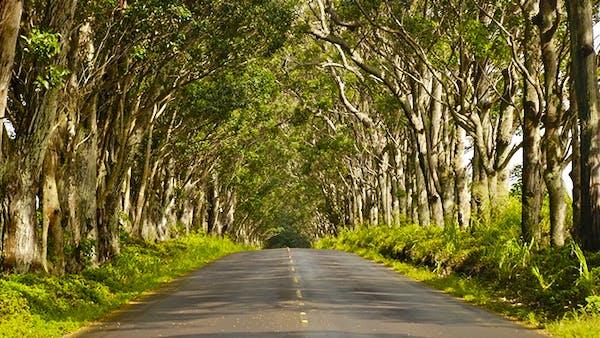 Drive Red Road on Big Island
