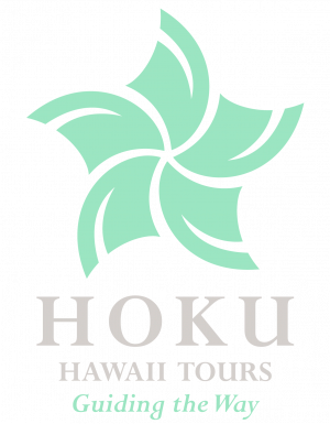 Hokulogo_stacked (1)