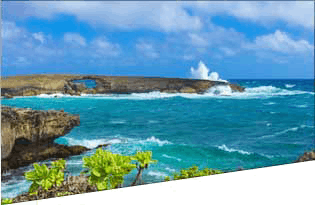 Picture of hawaiin coast