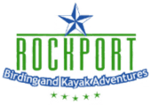 Rockport Birding and Kayak Adventures