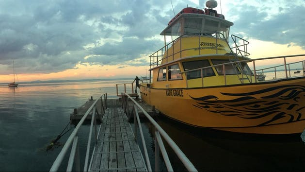 schoodic ferry at sunset