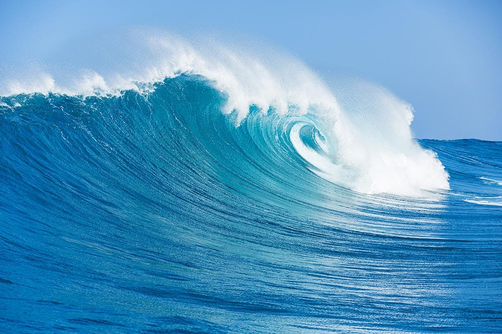 The Importance Of Our Oceans