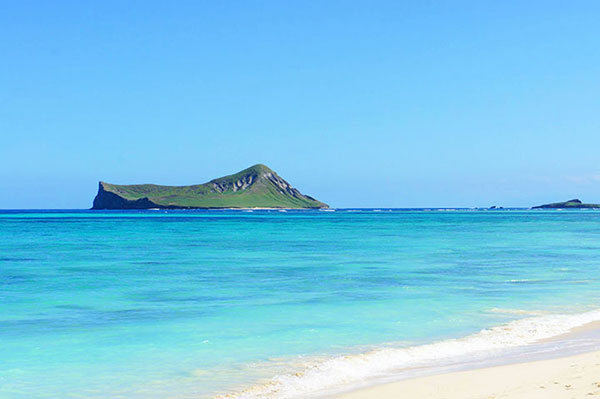 Oahu Private Island Tours