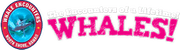 whale encounters hawaii logo