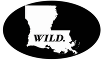 Wild Louisiana Tours
