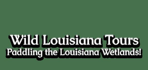 Wild Louisiana Tours banner