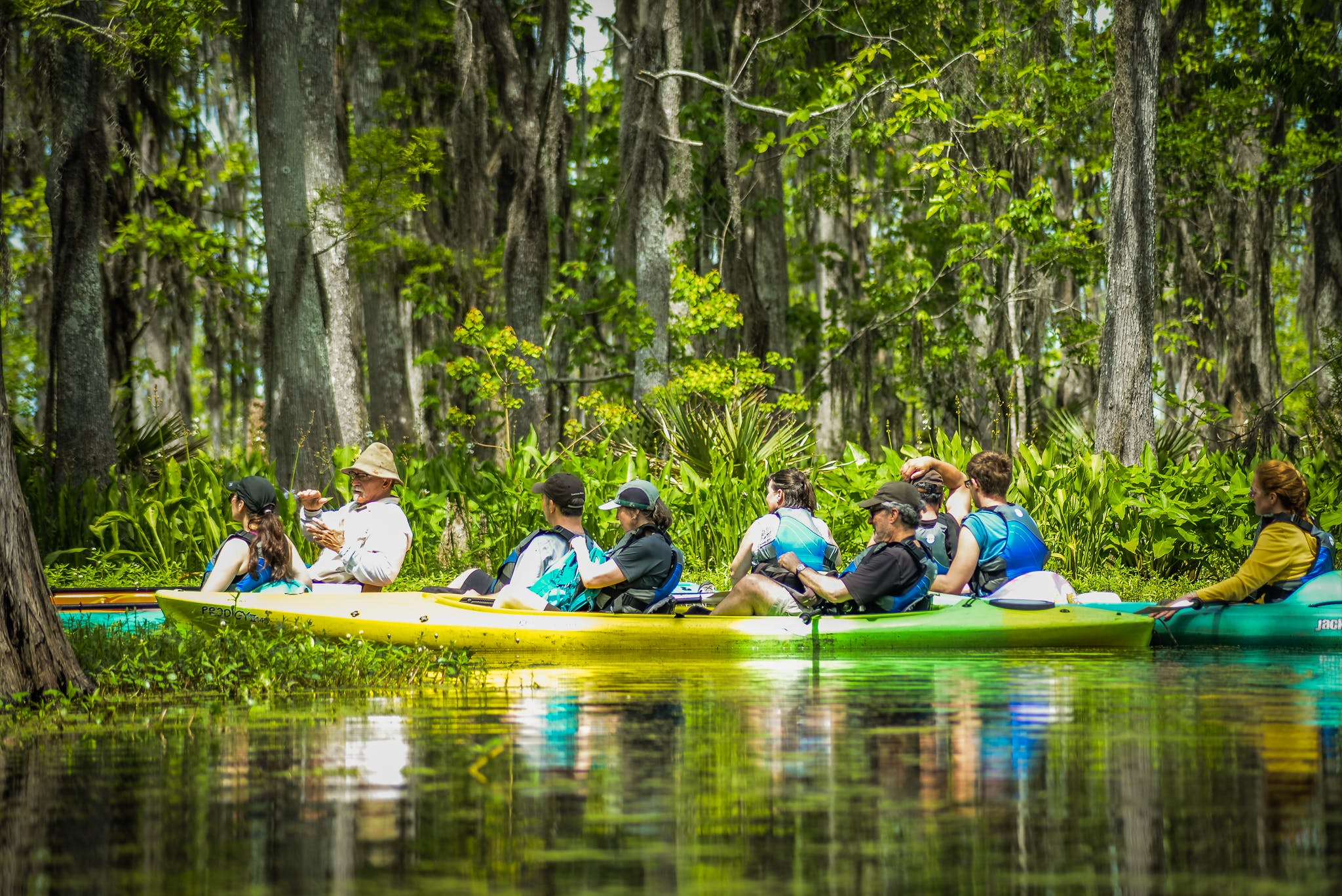 kayak, kayak tour, kayak swamp tour, new orleans, new orleans swamp tour