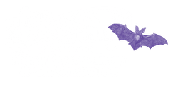 French Quarter History & Ghostbuster Tour