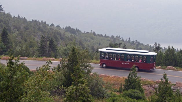 olis trolley in acadia national park