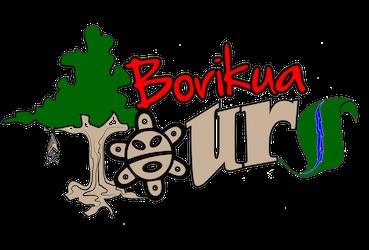 Borikua Tours PR